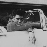 Foto del artista Elvis Presley