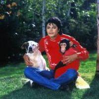 Foto do artista Michael Jackson