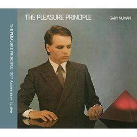 The Pleasure Principle (Expanded Edition)