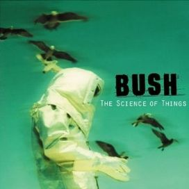 bush wild horses mp3