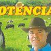 Foto de: POTÊNCIA FORRÓ  E TOADA