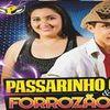 Foto de: PASSARINHO GÓIS & FORROZÃO 2.0