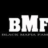 Foto de: Grupo BMF