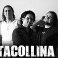 Foto de ALTACOLLINA