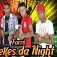 Forró Mulekes da Night