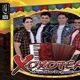 XOXOTEAR
