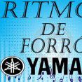 Robertinho Ritmos