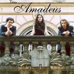 Foto de Trio Amadeus
