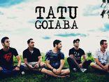 Foto de Tatu Goiaba