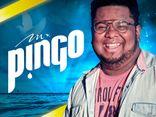 Mr.PinGO