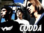 Foto de CODDA