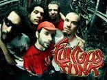 Fungos Funk Freak Family