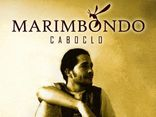 Foto de Marimbondo-caboclo