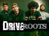Drive Roots
