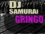 dj samurai I palcomp3/Oficial