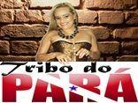 Tribo do Pará