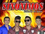Forrozão Sinônimos Vol 05