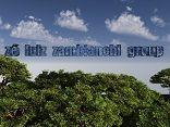 ZÉ LUIZ ZAMBIANCHI GROUP