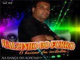 WALZINHO DO FORRO VOL.08 (OFICIAL)