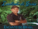Landinho de Goiás