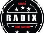 Radix Hc