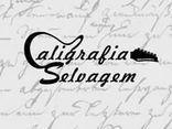 CALIGRAFIA SELVAGEM