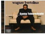 Wagner Bertolino