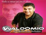 Waldômio - O Fofinho dos Teclados - Todos os ritmos em um só Show