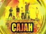 Cajah