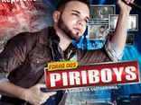 FORRO DOS PIRIBOYS VOL 4 ( 2013)