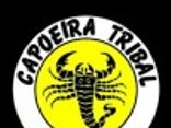 capoeira tribal