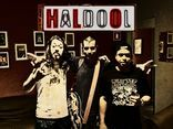 Haldool