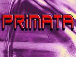 Projeto Primata