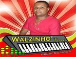 WALZINHO DO FORRÓ