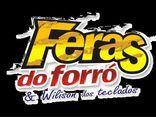 WILISON DOS TECLADOS E FERAS DO FORRÓ