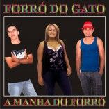 FORRO DO GATO