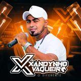 Xandynho Vaqueiro