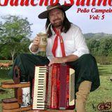 Gaucho Sulino