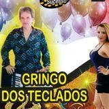 Foto de Gringo Dos Teclados