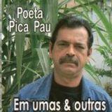Poeta Pica Pau