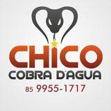 CHICO COBRA DÁGUA