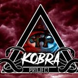 Kobra Project