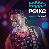 700 Galinhas (Ao Vivo) - Alexandre Peixe – Palco MP3 f886fc2fe6714