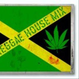 Imagem de Dj Reggae