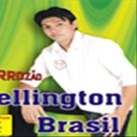 Imagem de wellington brasil