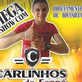 Imagem de Carlinhos Forró