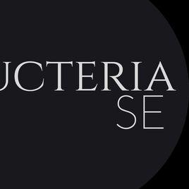 Imagem de Lucteria S
