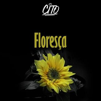 Foto da capa: Floresça