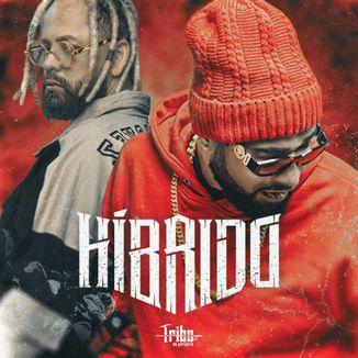 Foto da capa: Híbrido