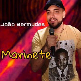 Foto da capa: Marinete - João Bermudes (O Bruto Capixaba)